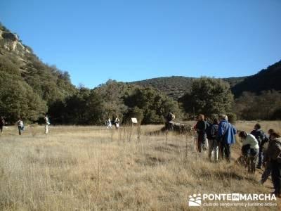 Cañón del Río Dulce y Sigüenza; senderos viajes y turismo; trekking semana santa